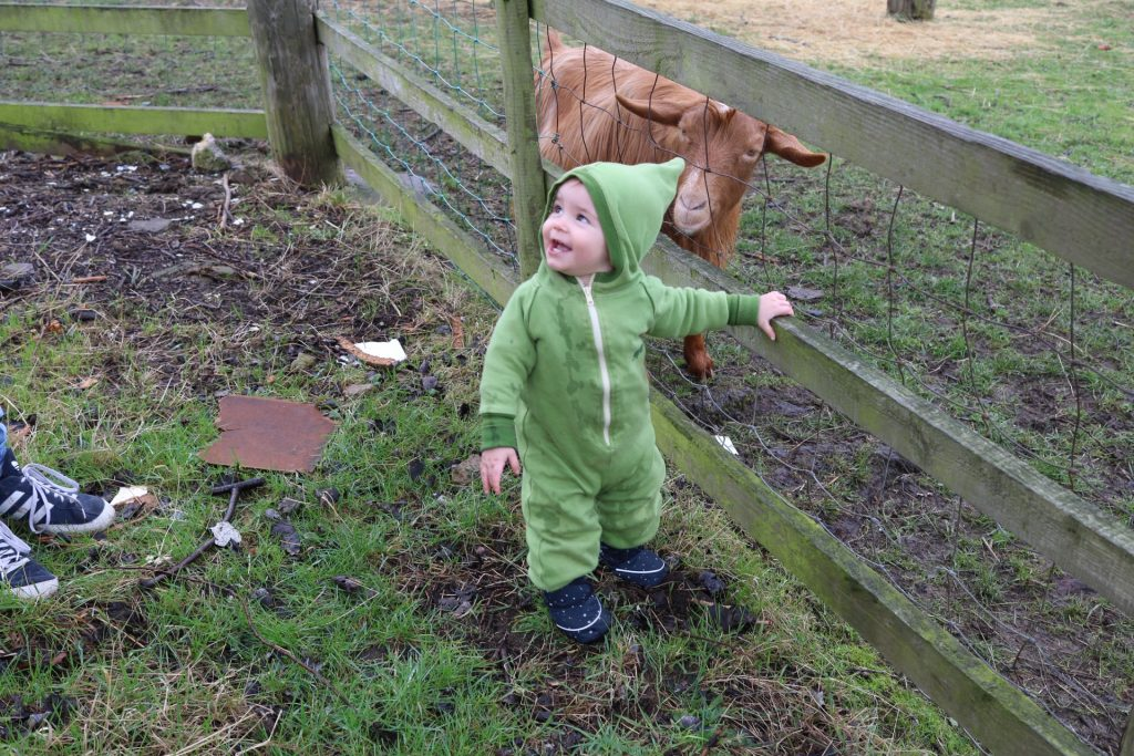 heeley city farm, sheffield with a toddler family day out