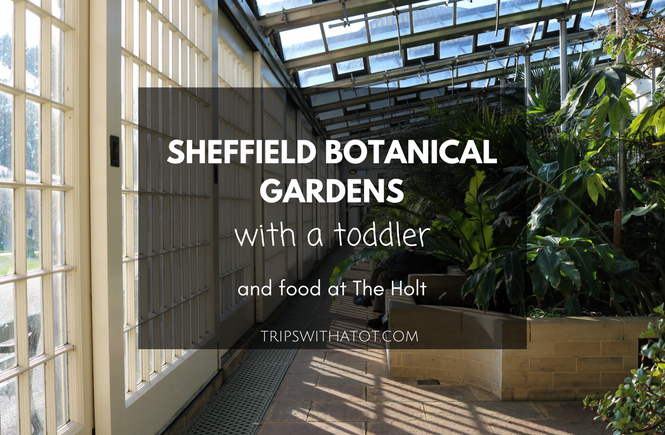 sheffield botanical gardens with a toddler 5 Free Things To Do At Sheffield Botanical Gardens