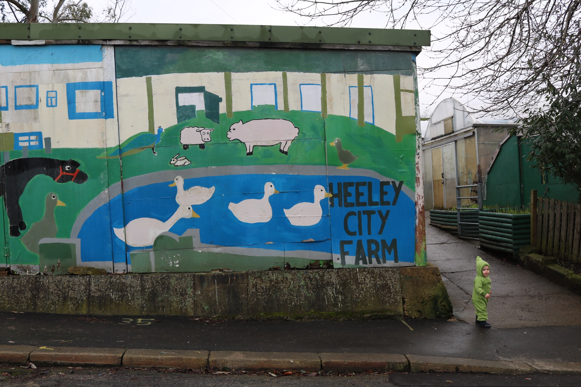 Heeley city farm Things to do in Sheffield with a toddler