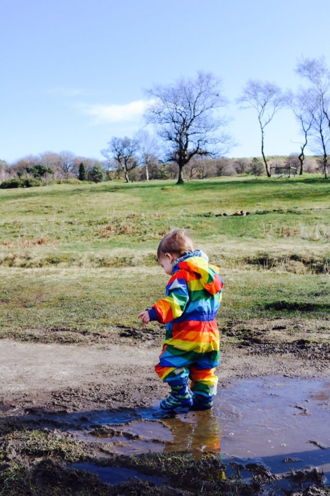 Top 5 free things to do in Sheffield for kids what to do in sheffield with kids longshaw estate national trust