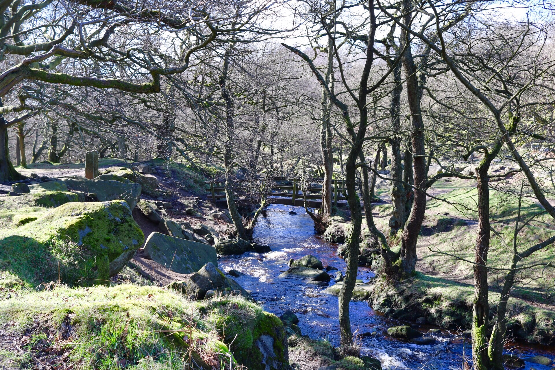 National Trust Family day out in the Peak District, near Sheffield at Longshaw Estate and Padley Gorge