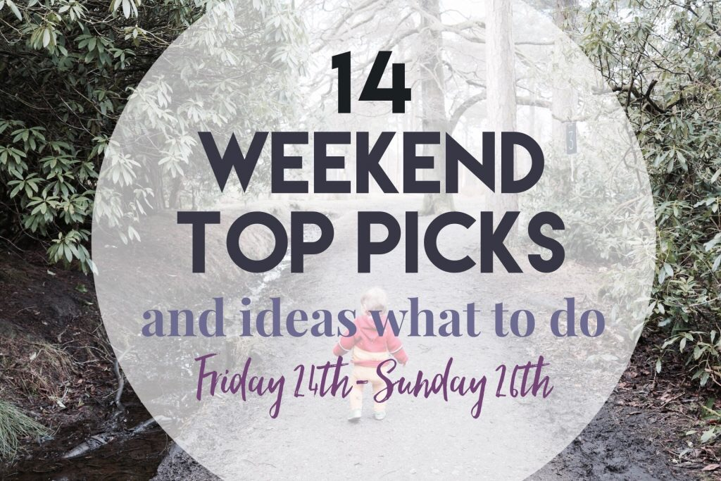 Weekend things to do in Yorkshire with kids