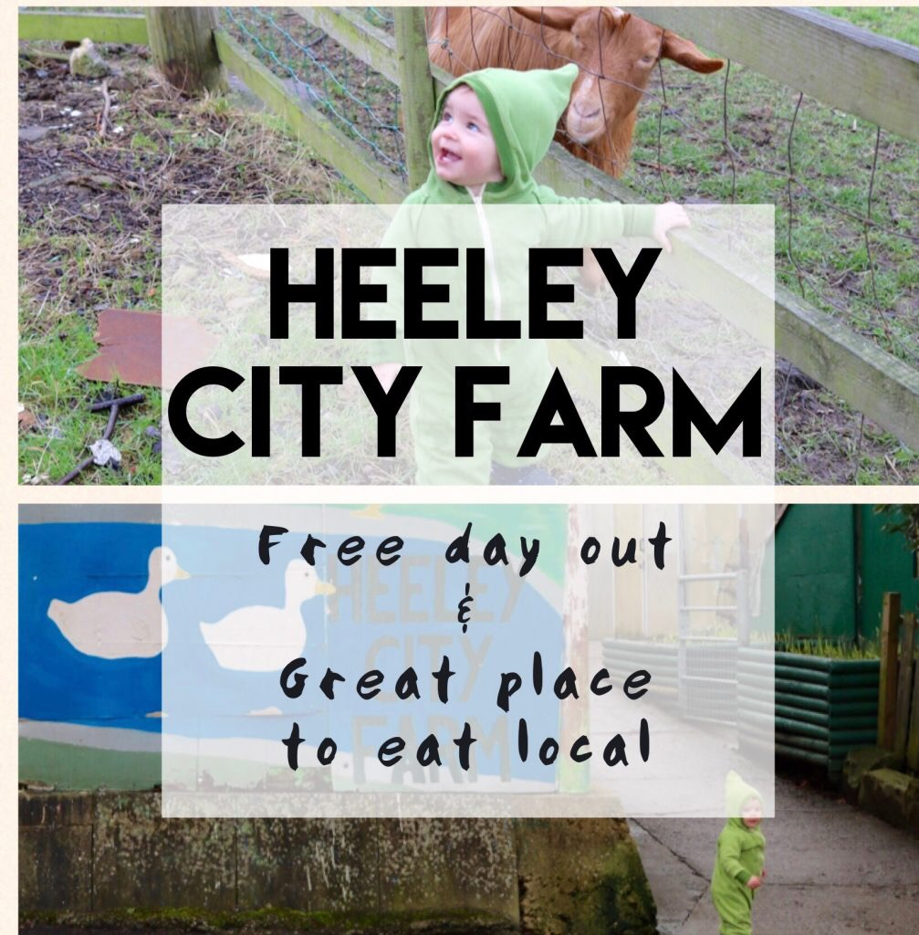 Heeley city farm Sheffield day out