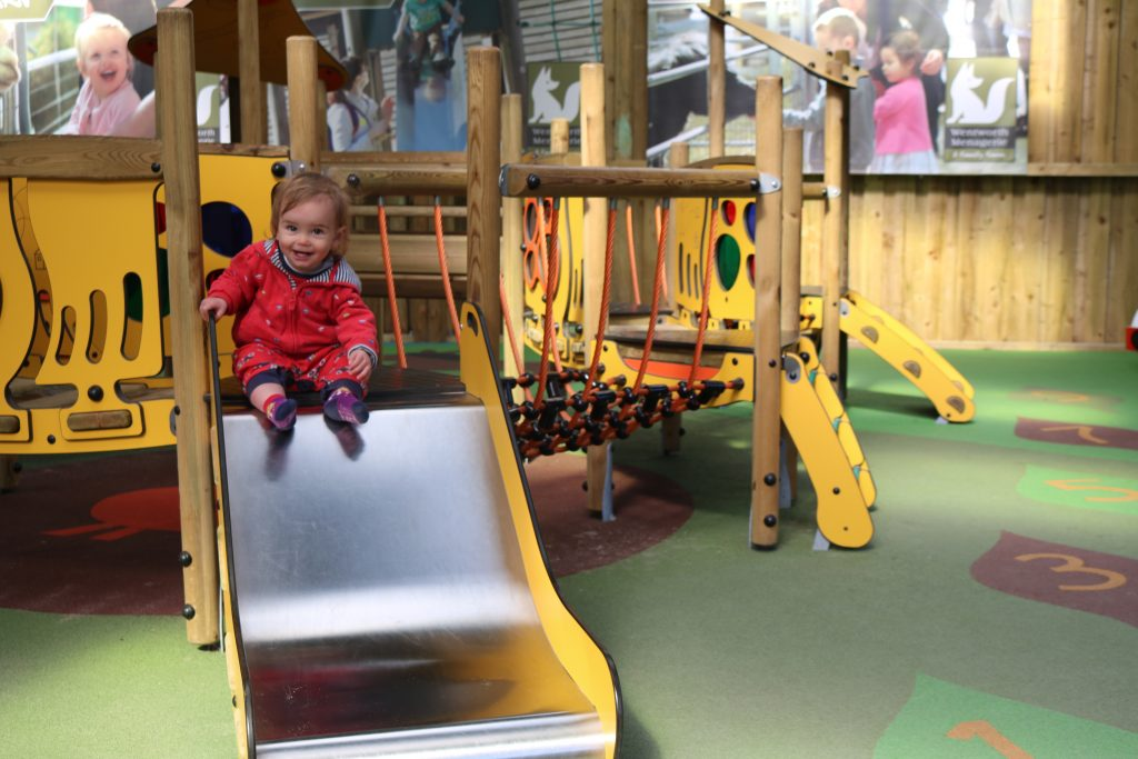 Wentworth garden centre 41 Things To Do In South Yorkshire Before You're 5