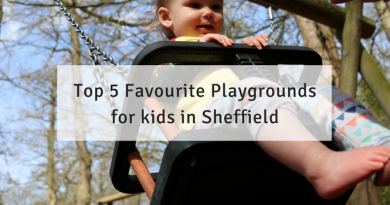 Top 5 Favourite Playgrounds for kids in Sheffield