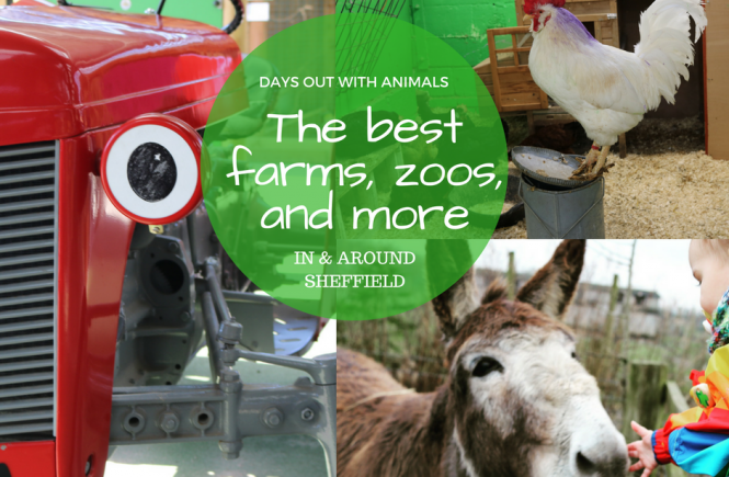 farms in and around Sheffield for kids