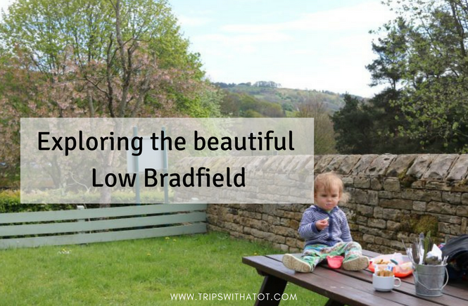 family day out in Low Bradfield