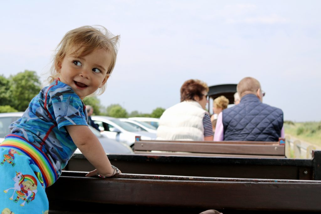 what there is to do for toddlers in Cleethorpes Cleethorpes coast light railway
