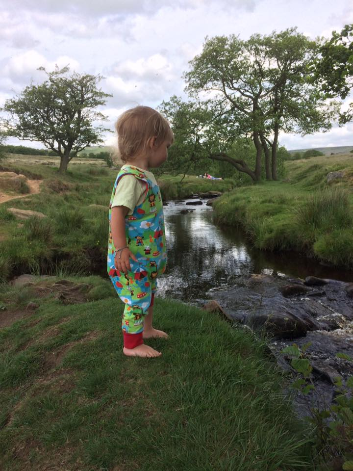 best picnic spots in and around South Yorkshire