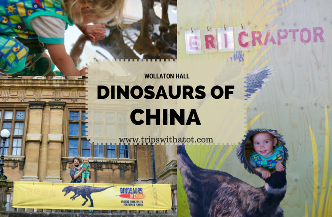 Wollaton Hall Dinosaurs of China exhibition