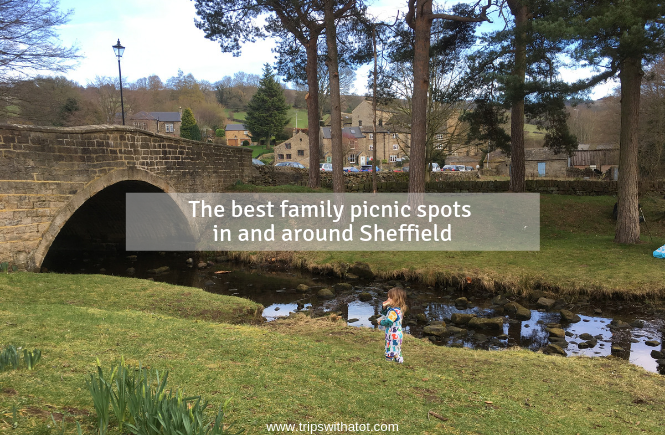 The best family picnic spots in and around Sheffield & South Yorkshire