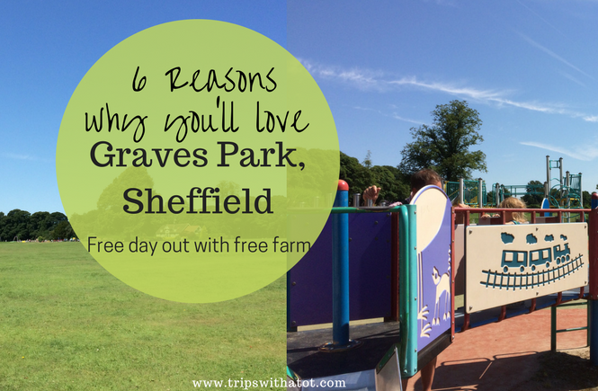 6 Reasons why you'll love Graves Park, Sheffield