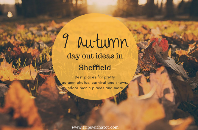 autumn days out in Sheffield