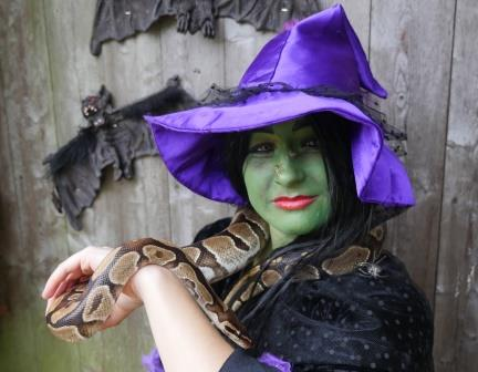 tropical butterfly house halloween Sheffield Want to find something to do for Halloween? Halloween is fast approaching, how will you be spending this creepy time of year? Here's a guide to the best family events for Halloween 2017 in and around South Yorkshire.