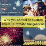 Illuminate The Gardens: Why you should be excited about this magical Sheffield Event