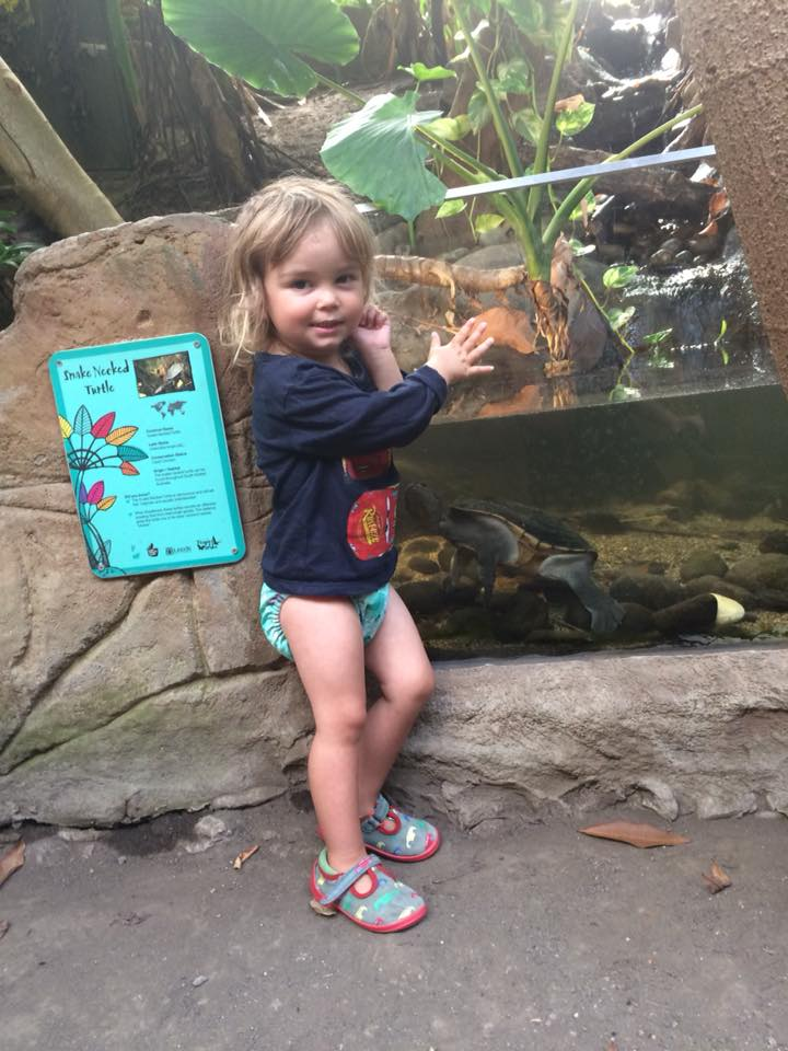 6 Reasons Why You'll Love Tropical World in Leeds