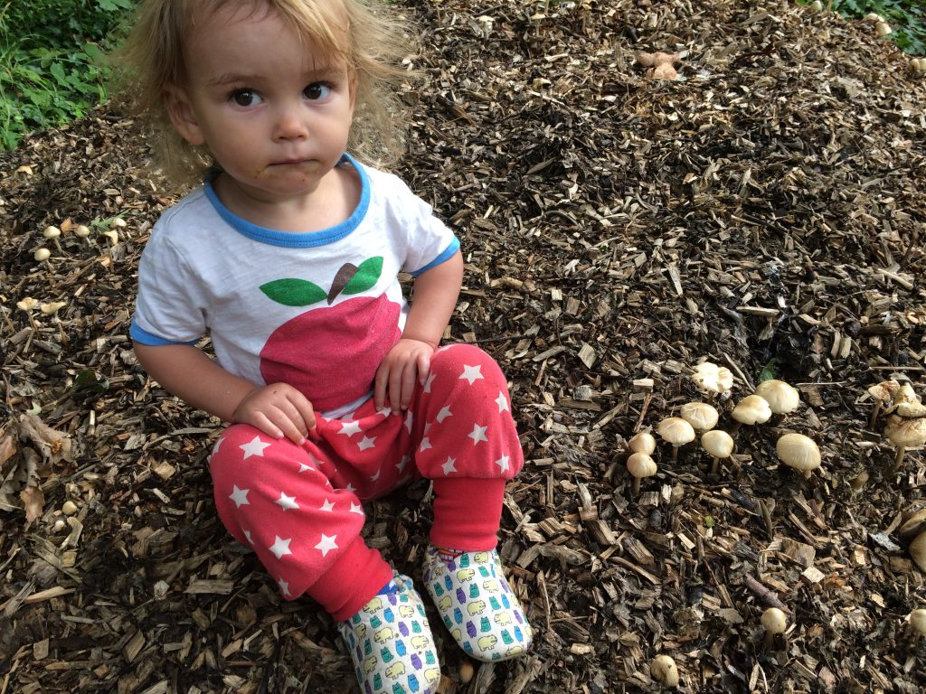 Apple Little Bird Top, Red Star Frugi Pants and Pico Nido shoes.
