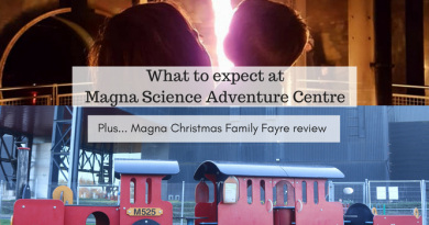 Magna Science Adventure Centre & Christmas Family Fayre review