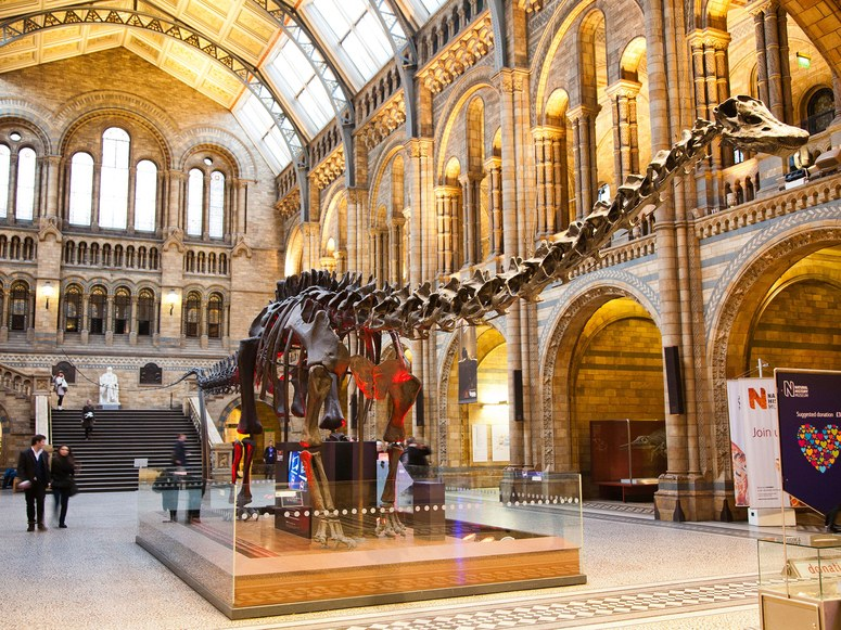free-london-natural-history-museum