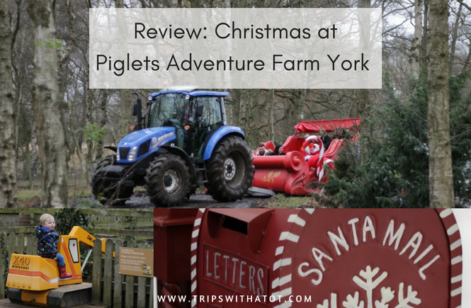 Your Experiences: Piglets Adventure Farm at Christmas review