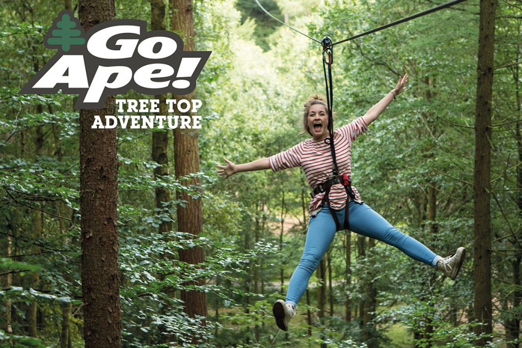 tree-top-adventure-for-11095733