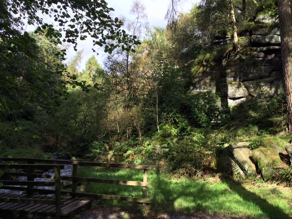 10 Magical outdoor spaces for fairytale walks in Sheffield Wyming brook lodge moor