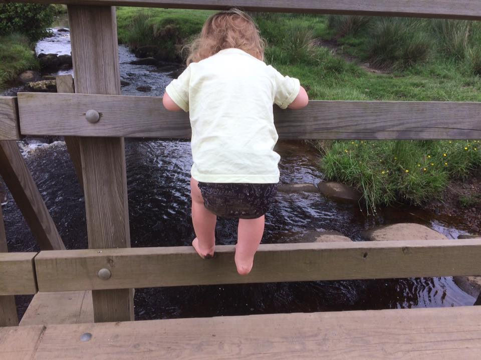 Padley Gorge | Longshaw Estate | Best Things To Do and See in the Peak District with Kids