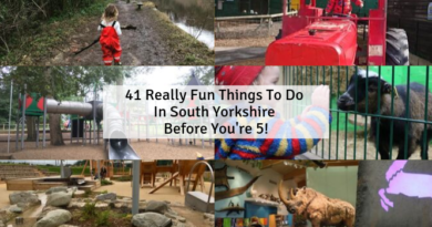 41 Really Fun Things To Do In South Yorkshire Before You're 5!