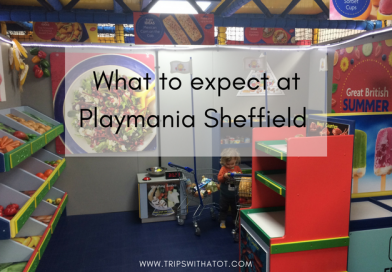 Playmania Sheffield Indoor soft play centre