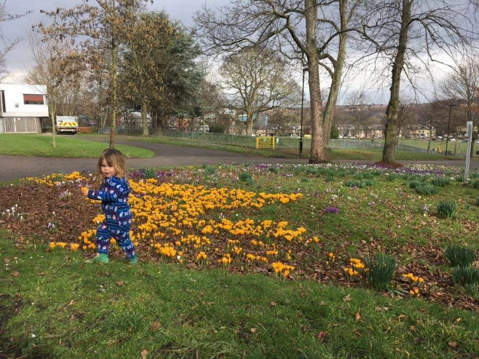 5 things to do at Hillsborough Park, Sheffield