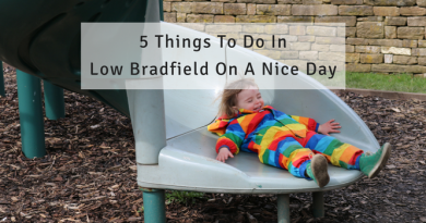 5 Things To Do In Low Bradfield On A Nice Day