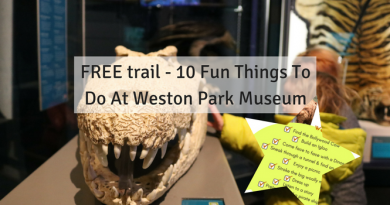 Weston Park Museum - 10 Fun Things To Do Free Trail
