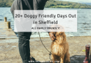 20+ Doggy Friendly Days Out in Sheffield!
