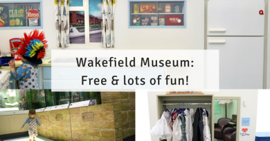 Things To Do In Wakefield: Free Day Out at Wakefield Museum 8 FREE rainy day things to do in Sheffield for kids