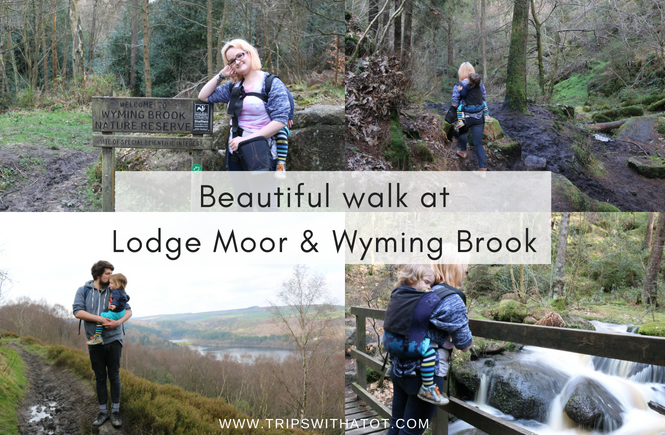Lovely Walk at Lodge Moor & Wyming Brook