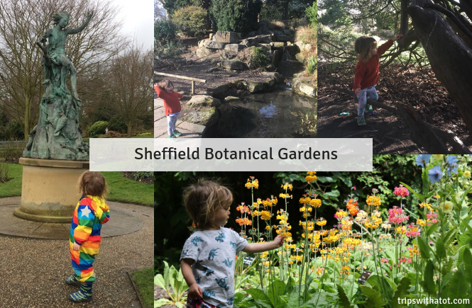 5 Free Things To Do At Sheffield Botanical Gardens
