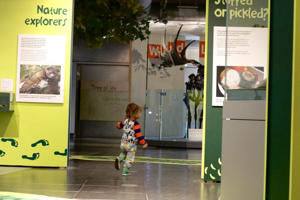 Thinktank Museum in Birmingham: prices, review & best things to see with a toddler
