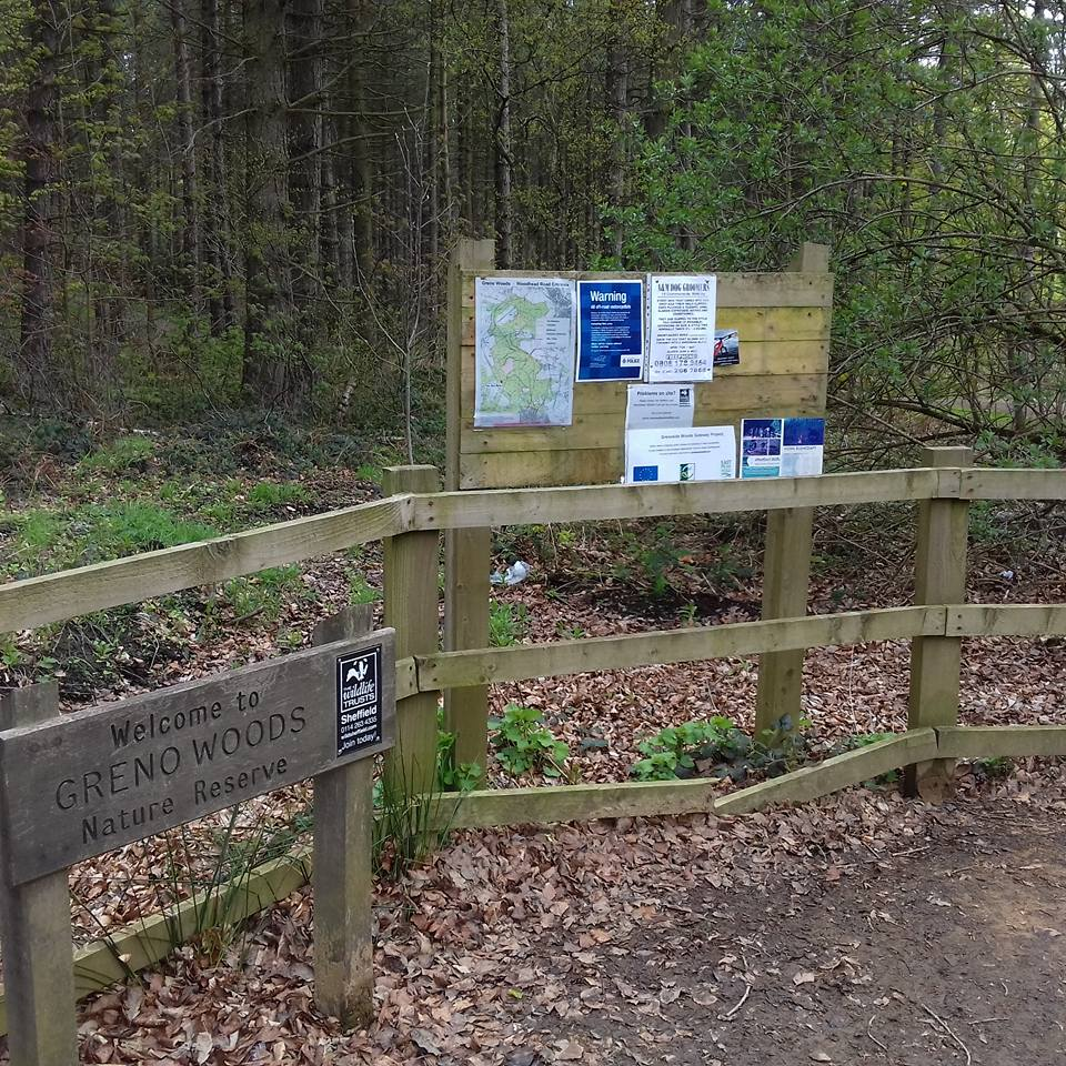 How To Find Enchanted Forest Trail at Greno Woods, Sheffield