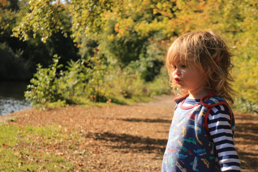 rivelin valley park This week best bits 24-30 September
