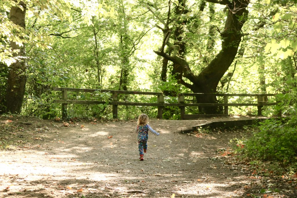 50+ FREE Fun Palaces | What's on this weekend in and around Sheffield for kids October 6/7 | rivelin valley park This week best bits 24-30 September