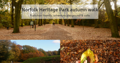 Norfolk Heritage Park in autumn