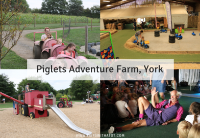 Piglets Adventure Farm, York | Prices & Things To Do With A Toddler