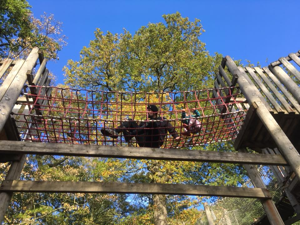 Family favourite: Chatsworth House farmyard & Adventure playgrounds