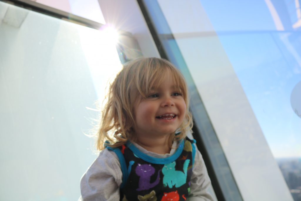 Things To Do In London with a toddler - Sky Garden