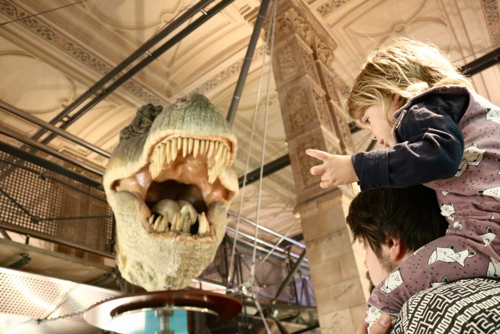 Things To Do In London with a toddler - Natural History Museum