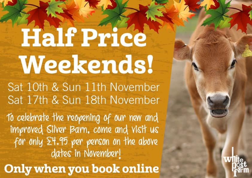 white post farm | What's on this weekend in and around Sheffield for kids November 10/11