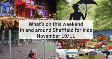 What's on this weekend in and around Sheffield for kids November 10/11