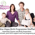 The Wise Hippo Birth Preparation Programme Sheffield - Antenatal Classes and hypnobirthing