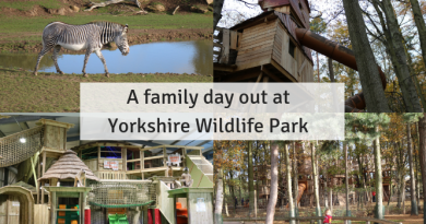 Winter Season at Eureka! with lots of extra stuff going on including a winter show. A family day out at Yorkshire Wildlife Park: review