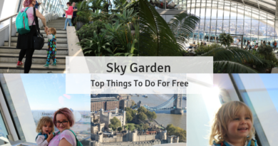 Sky Garden in London: Things To Do For Free in London with Kids